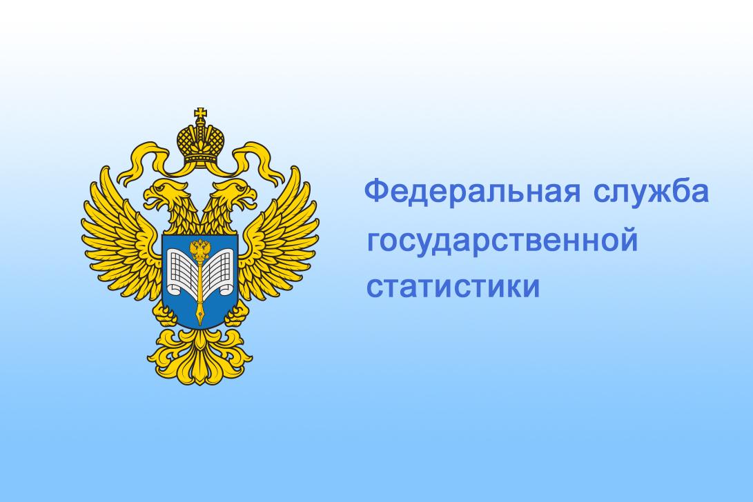 Опубликован доклад Росстата «Социально-экономическое положение России»